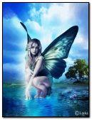 천사의 요정 41