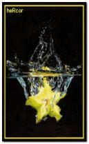 splash 2 240x400