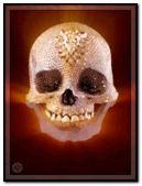 Animated Bling Skull