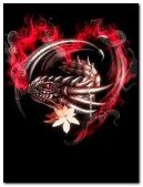 fire dragon heart