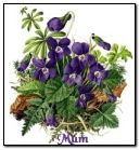 Mothers-Day-flowers-in-basket