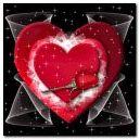 LOVE & ROSES!