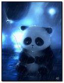 сумний панда