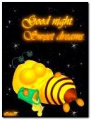 Good night. Sweet dreams.