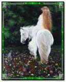 घोड़ों की महिला