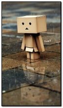 Danbo miss you