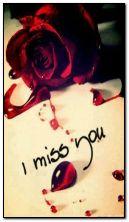 Ich vermisse dich