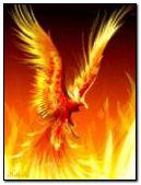 fantasi phoenix wallpaper