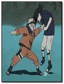 Anim Fight