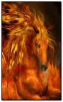 fiery horse 240x400