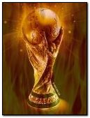 World cup fire