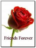 Bạn bè mãi mãi