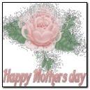 어머니 날 - 핑크 로즈