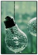 Light bulbs in rain