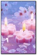 velas cor de rosa