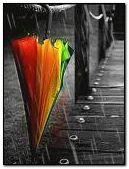 neon şemsiyesi