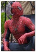 hombre araa