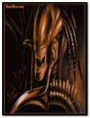 alien vs predator 240x320