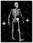 skeleton crazy dance