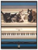 PIANO MUSIC CAT