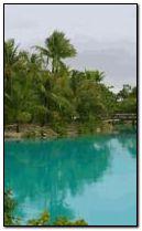 Tropic Paradise 3