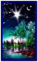 bellas stars