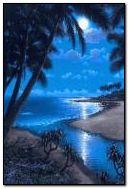 Night Beach 7
