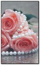 delicate roses and pearls
