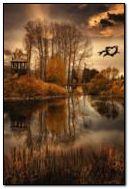 Noite de outono
