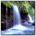 GIF image