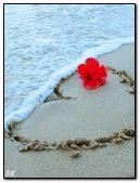 heart at the sea