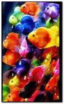 fish&