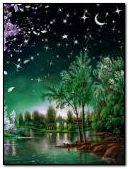 Nature Night Animated