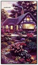 Ogród wieczorem
