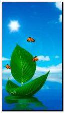 Весна Корабель. Метелики 360?640