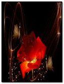 Glitter Rose240x320