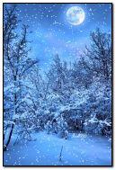 हिमधवल रात्री