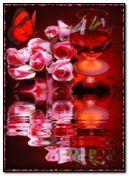 Rosas rosadas