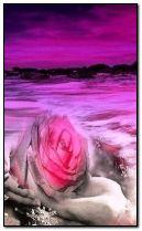الحب هو بين والمحيطات من العاطفة-GIF
