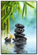 Zen Design