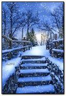 下雪的夜晚