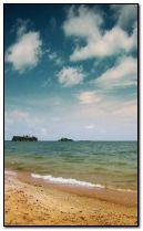 الشاطئ الصيفي.
