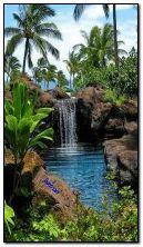 cachoeira animada e natureza