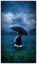 nur glücklich wenn es regnet