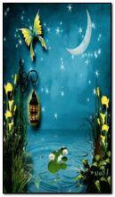 Sihirli gece