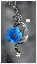Błękitny kwiat i motyle