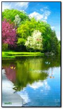 thiên nhiên đầy màu sắc