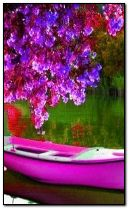 pink boat with spring flowers