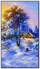 cây trong mùa đông