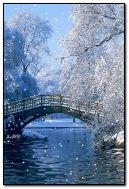 Winter Nachmittag im Park